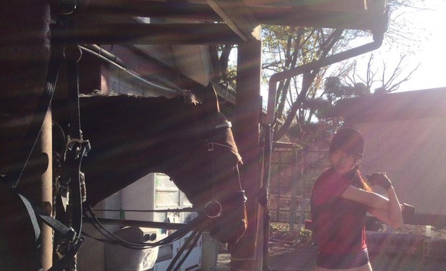 真!欅の木の真下にはVIPに繋がる坑道がある【乗り遅れた長沢菜々香応援】part21 [無断転載禁止]©2ch.netYouTube動画>3本 ->画像>1127枚