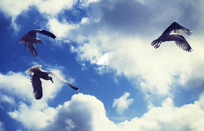 【欅坂46】志田愛佳応援スレ★7 【もな】 [無断転載禁止]©2ch.netYouTube動画>4本 ->画像>1454枚